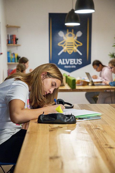 Élève travaille ses exercices en tutorat et en cours particuliers